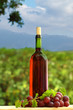 Wine bottle and grape - background