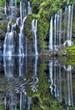 Bassin de la rivière Langevin, La Réunion.