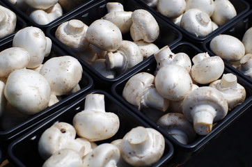 Baskets of White Mushrooms at a Market
