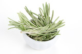 Rosemary (Rosmarinus officinalis) in a white bowl on white backg