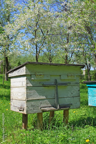 Apiary on a slope