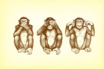 drei Affen (nicht sehen, hören, sagen)