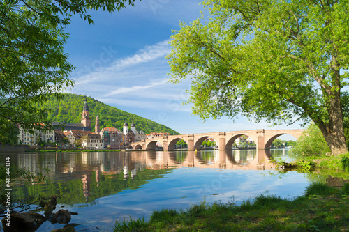 Am Ufer des Neckar