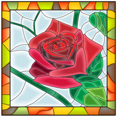 Vector illustration of flower red rose.