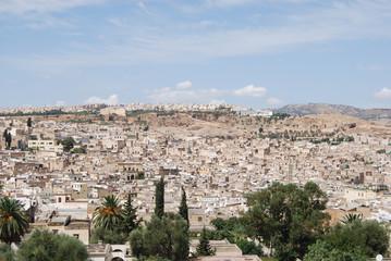 Visita general de la ciudad de Fez.