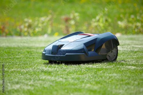 Rasenroboter im Garten - 41348799