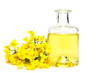 canvas print picture - Fresh canola oil