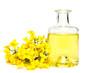 Leinwandbild Motiv Fresh canola oil