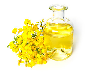 Fresh canola oil