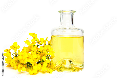 canvas print picture Fresh canola oil