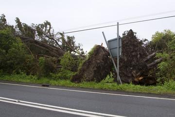 Roadside damage after the storm