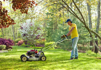 Mowing lawn during the spring