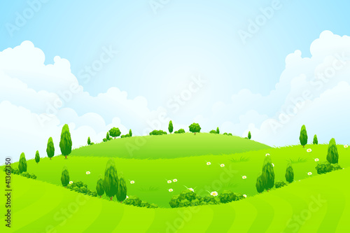 春天景观植物树树叶现场环境绿色背景自然花草甸蓝色
