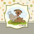 dog & cat's friendship