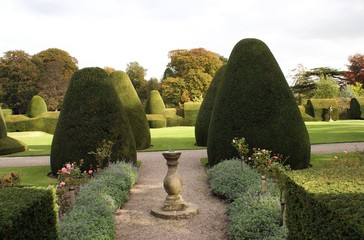 decorative garden with hedge, topiary, & sundial