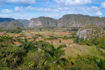 Vallée de Viñales, patrimoine mondial UNESCO, Cuba (2)