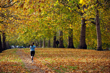 Jogger in park during Autumn