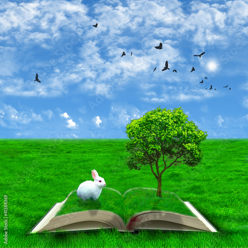 Fantasy fairy tale book - 41384369