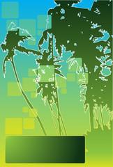 palm beach advertisement vector