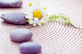 natural beauty care and wellbeing, spa stones and flowers poster