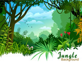 Fototapety AMAZON JUNGLE TREES AND WILDERNESS