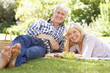 Senior couple with picnic in park - 41397333