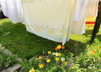 Bucato di primavera