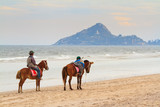Two horse on beach.