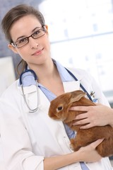 Young veterinary with cute patient