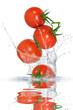 Gemüse 141