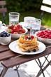 Breakfast in garden
