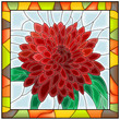 Vector illustration of flower chrysanthemum.