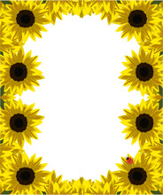 frame of gold sunflowers