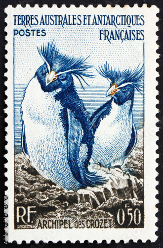 Postage stamp France 1956 Rockhopper Penguins, Crozet Archipelag