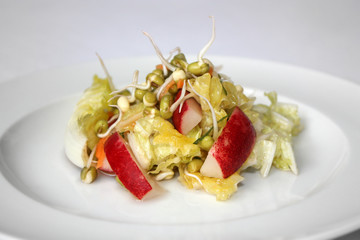 FRESH SEASON SALAD with radish, mungo sprout, ...