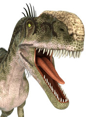 monolophosaurus close up portrait
