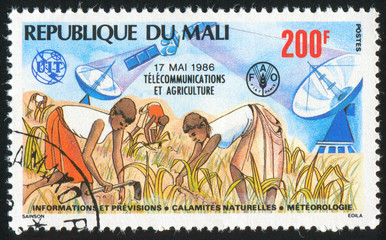Telecommunications and Agriculture