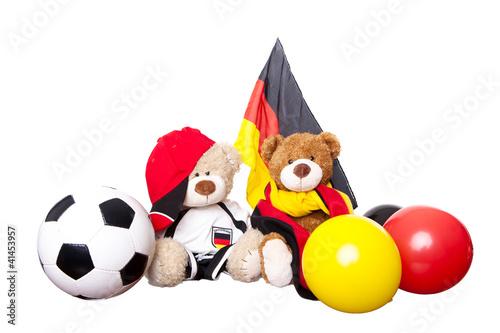 fussballfans em