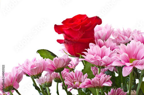 beautiful red rose and chrysanthemum