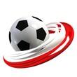 polnisch fussball