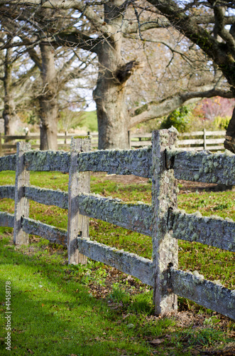 Old post and rail fence covered in moss