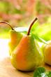 Erntefrische Birnen