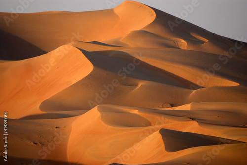 Tuinposter Zandwoestijn Dunes in Abu dhabi