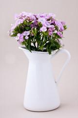 verbana flowers
