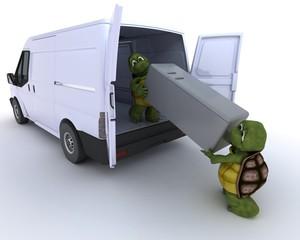 tortoises loading a refridgerator into a van