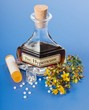 Hypericum plant and extract and homeopathic pills