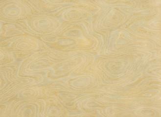 MAPLE WOOD (ARCE)