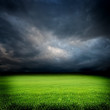Dark Cloudy Sky And Green Gras...
