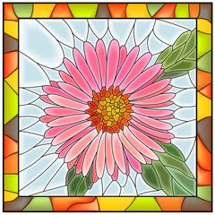 Vector illustration of flower pink aster.