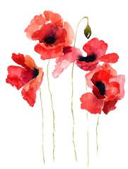 Stylized Poppy flowers illustration